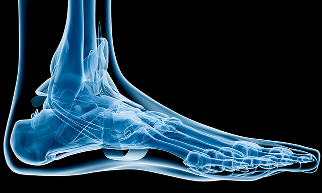 In-Store Podiatry