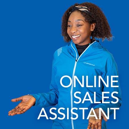 Online Sales Assistant