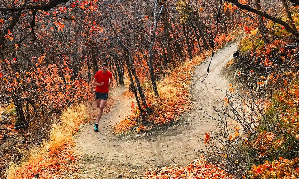 Best Trail Running Shoes: September 2019