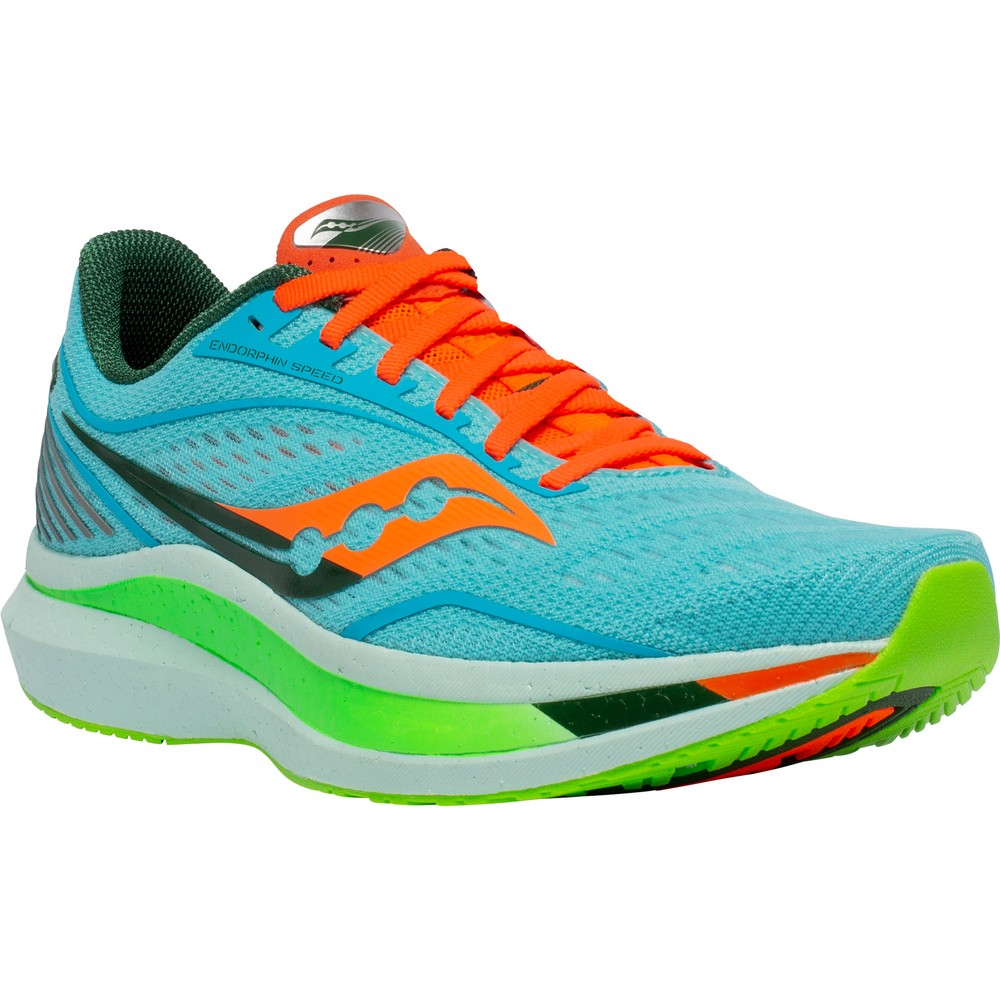 Saucony Endorphin Speed #10