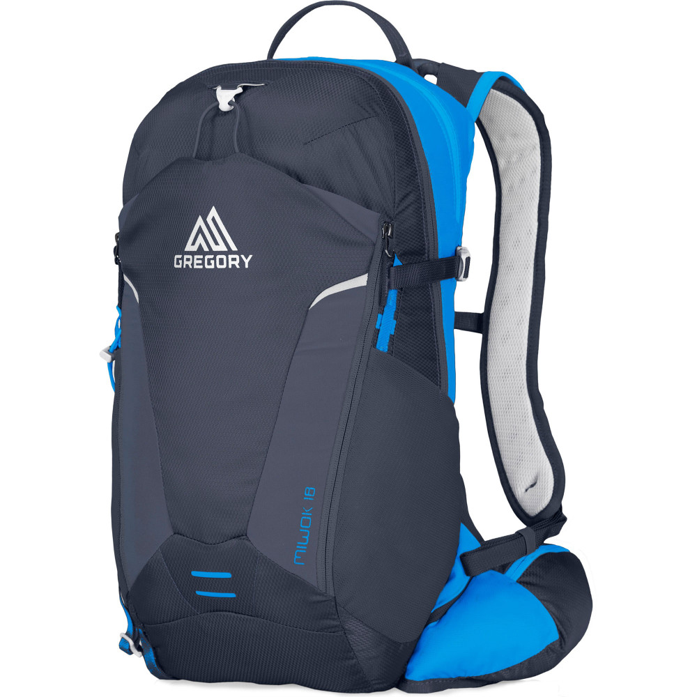 d6670a6e78f Buy Men's Gregory Miwok 18L Running Backpack | Run and Become