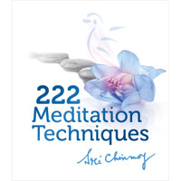 BOOK 222 Meditation Techniques