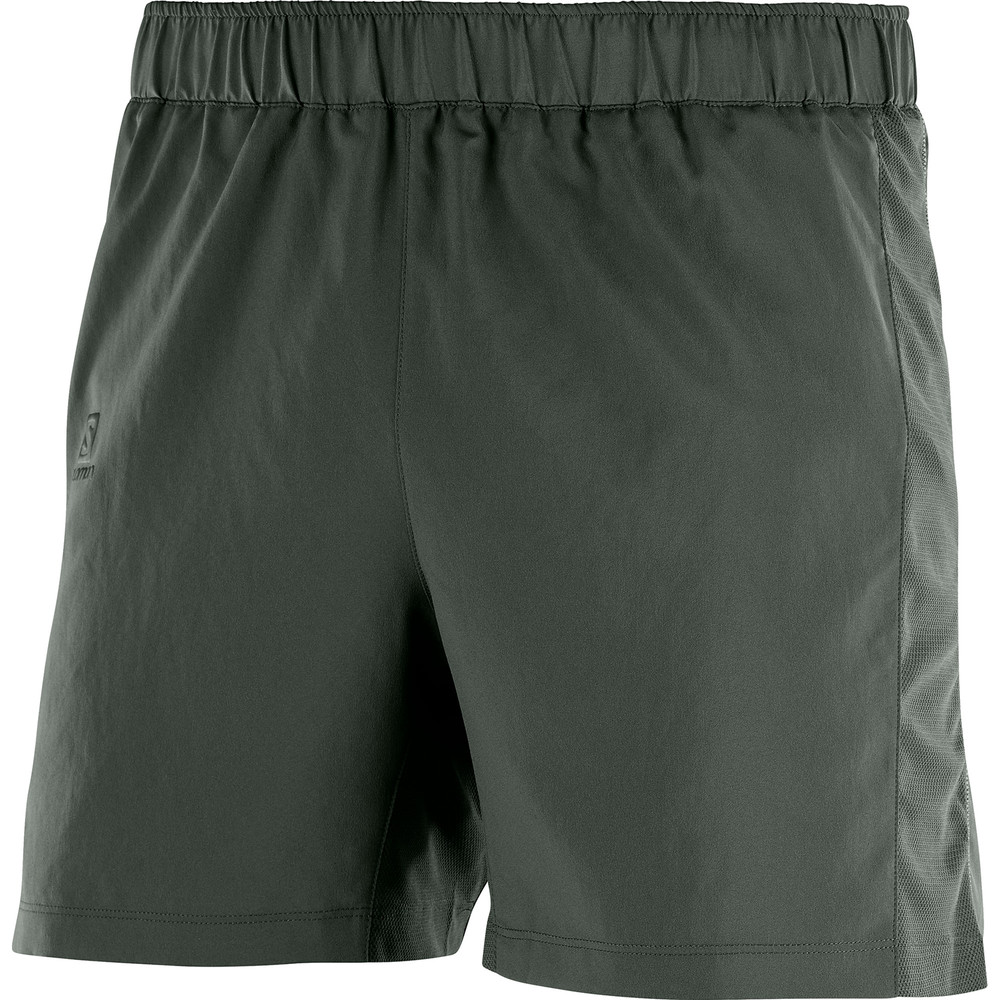 Salomon Agile 5in Shorts #1