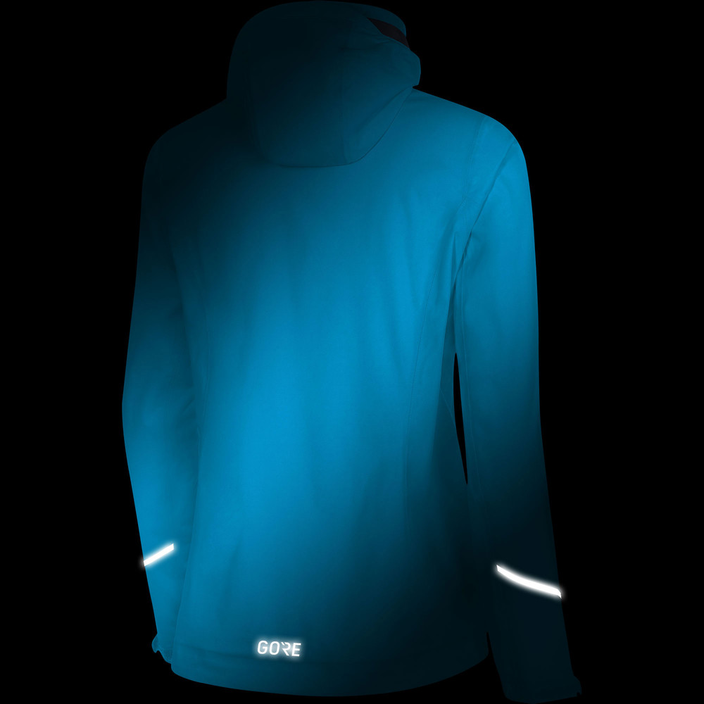 Gore GTX Active Hooded Jacket #8