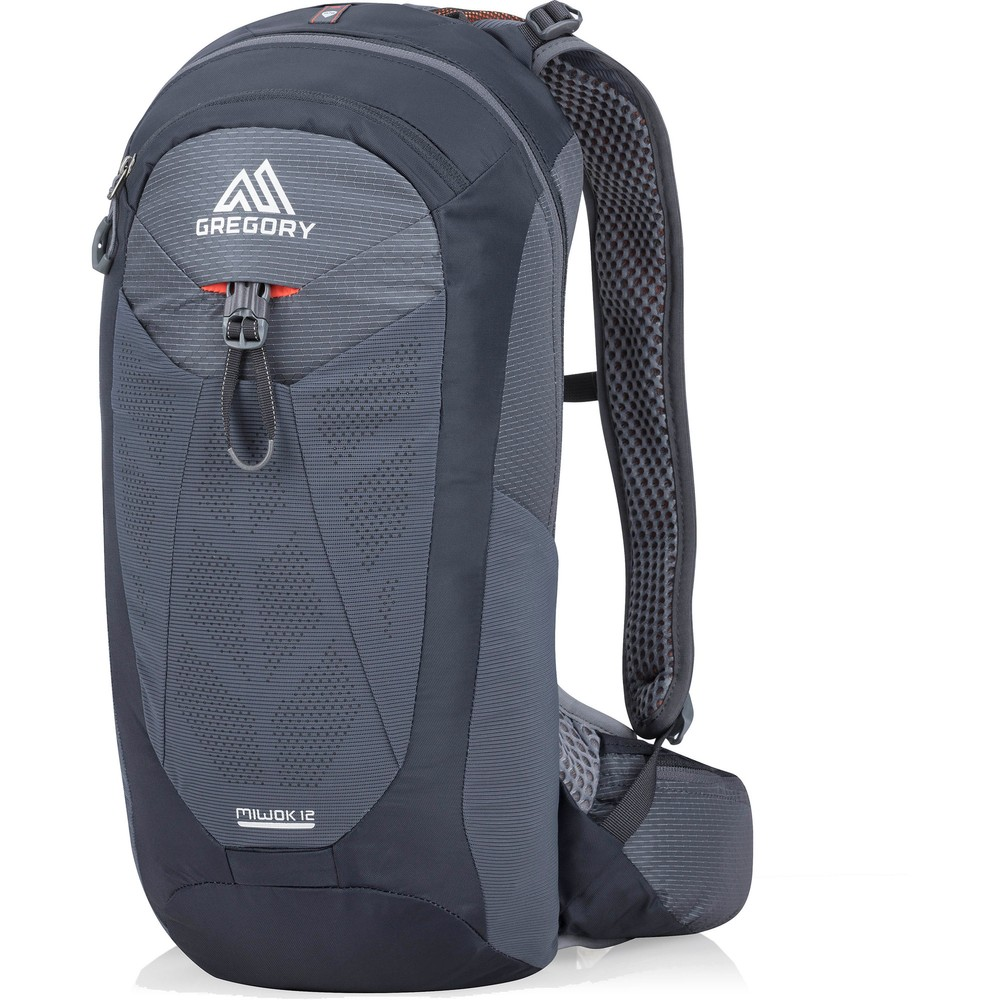 Gregory Miwok 12 Backpack #4